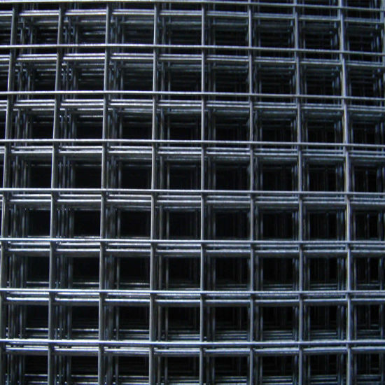 4.0 mm Galvanized Welded Wire Mesh Made in China pictures & photos