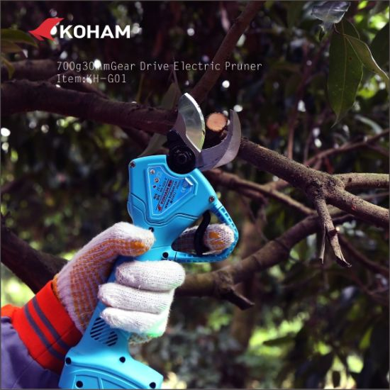 18V Li-ion High Speed Electric Grape Pruning Shears Electric Tree Pruner pictures & photos