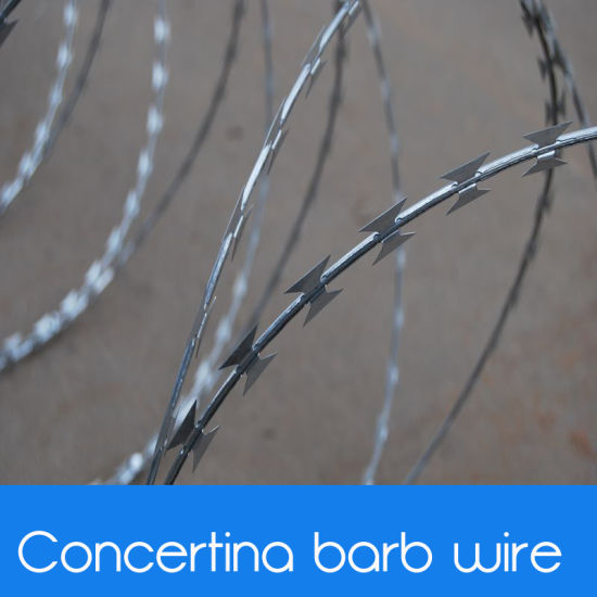 China Factory Price of Military Concertina Razor Barbed Wire - China ...