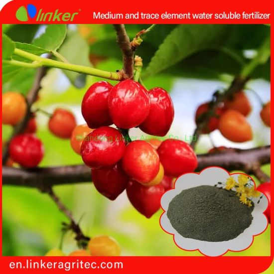 Medium and Trace Element 100% Water Soluble Powder Fertilizer Application Carbon Enzyme Technology