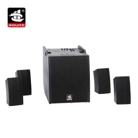 Combo Speaker Professional Loudspeaker Bluetooth Speaker (SARV 500MS)