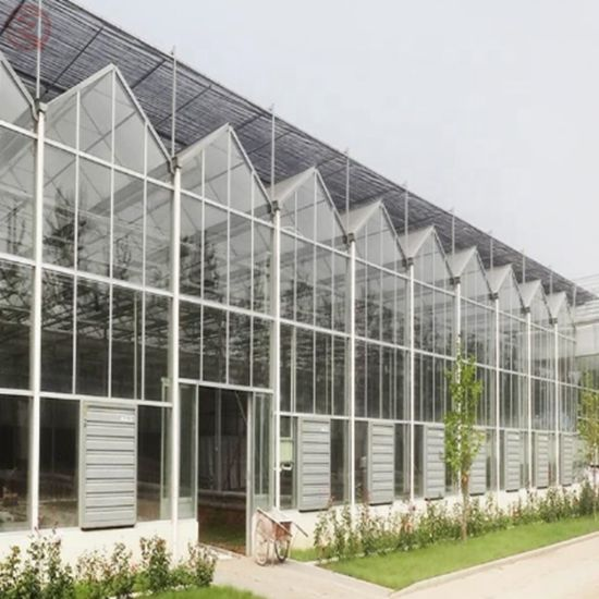 Flower/Fruit/Vegetables Growing Glass PC Sheet Greenhouse with Sunshade System
