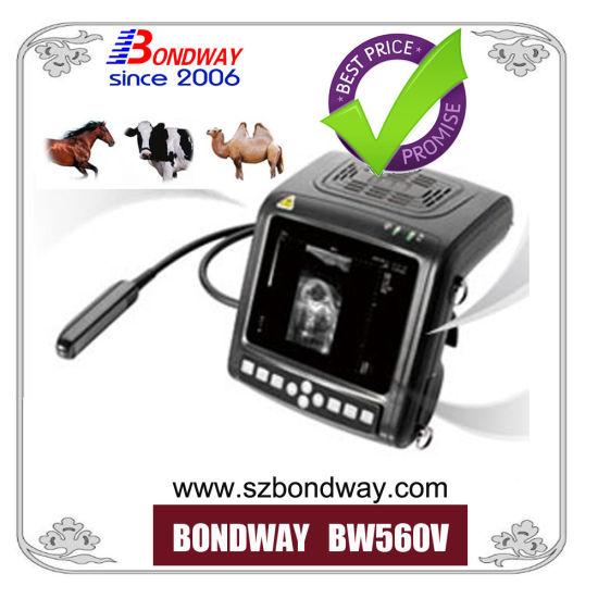 Digital Portable Veterinary Ultrsound Scanner, for Veterinary Service Center, Pet Care Center, Ultrasound System, Medical Device, Ultrasound Machine