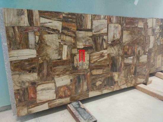 Semi Precious Stone Petrified Wood