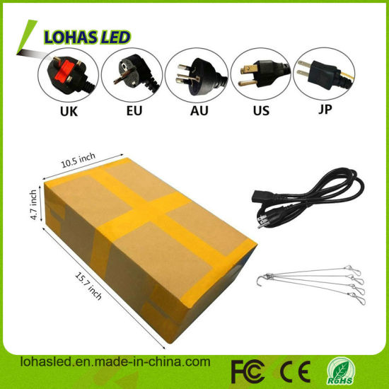 Plants Big Power 300W-2000W Dual Chip LED Plant Grow Light for Bloom Vegetable Greenhouse pictures & photos