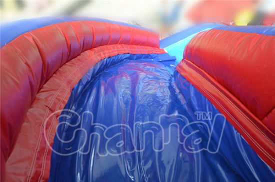 Colorful Backyard Inflatable Water Slide with Small Pool pictures & photos