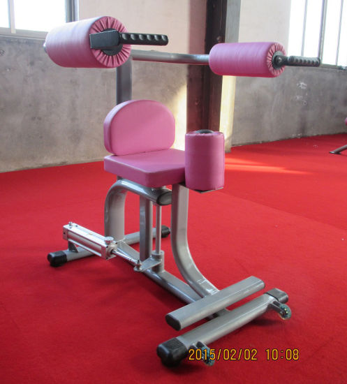 Certificated Hydraulic Fitness Equipment / Rotary Torso (SH2-10) pictures & photos