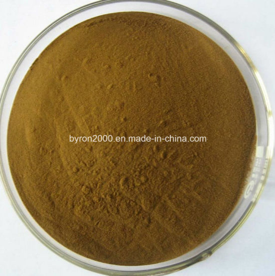 The Best Quality Yohimbe Bark Extract Powder pictures & photos