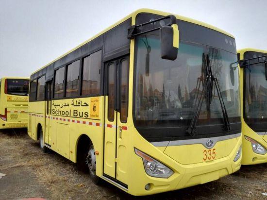 8.3m School Bus 40-50 Seats Best Selling Overseas