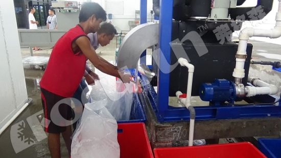 15 Tons/Day Tube Ice Machine pictures & photos