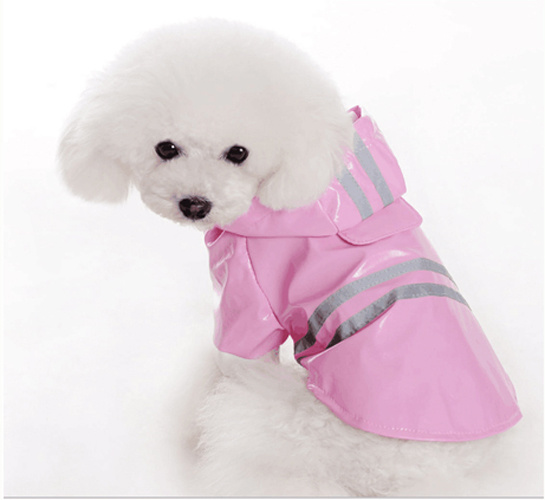 So Cute Cute Dog Raincoat pictures & photos