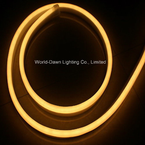 Ce EMC LVD RoHS LED Neon Rope with 2 Years Warranty (WD-E-SMG - FNF2L-SMD- 120L) pictures & photos