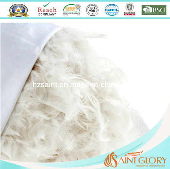 Professional Goose Duck Feather Down Pillow Home Bedding Neck Pillow pictures & photos