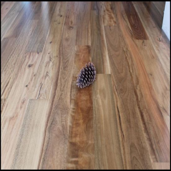 China Solid Spotted Gum Hardwood Flooring China Spotted Gum Wood