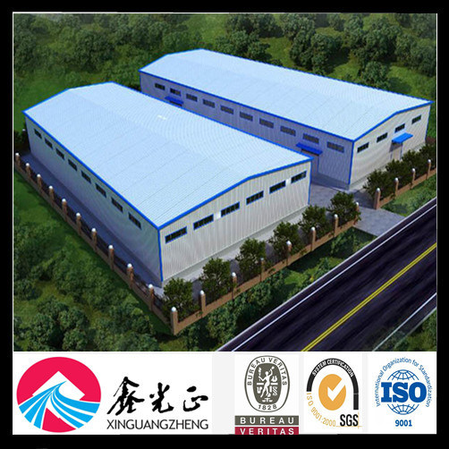 ISO Certificated Steel Structure Warehouse (SS-313)