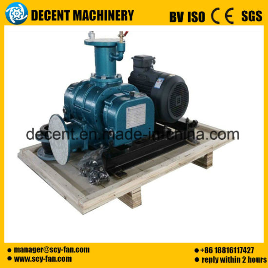 L93 Roots Blower&Rotary Vacuum Pump&Rotary Blower. pictures & photos