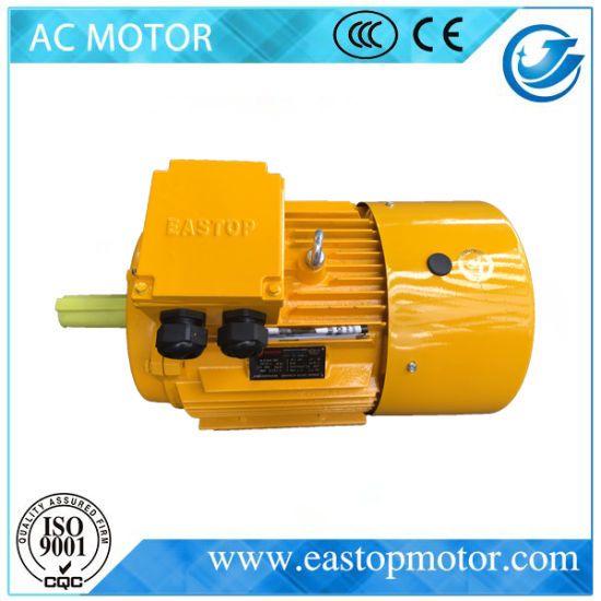 Ce Approved Y3 3 Phase Induction Motor with Cast Iron Body pictures & photos