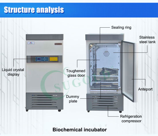 Controlled Wet LCD Fluoride-Free Mould Incubator pictures & photos