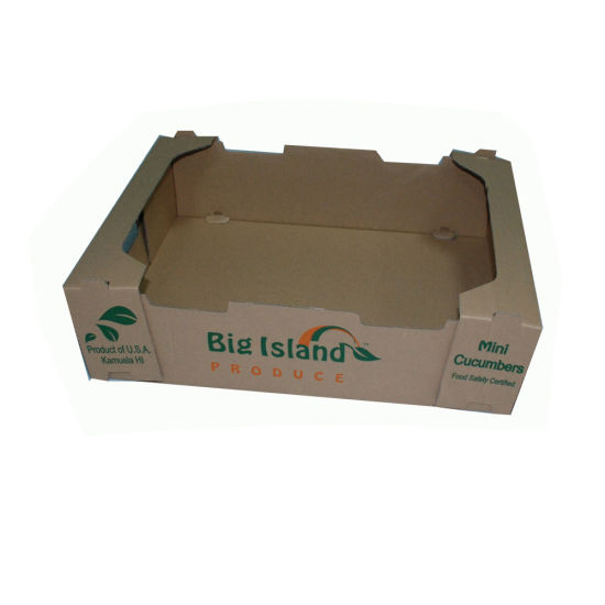 c7b2167e5628a China Customized Strong Quality Paper Tray Box for Fruit - China ...