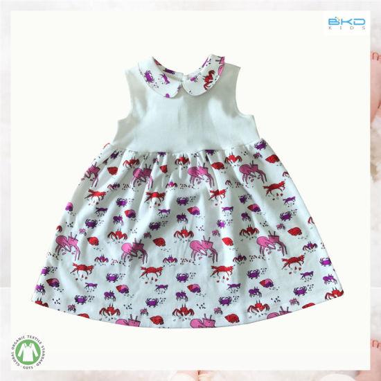 China Custom Size Small Baby Clothing Baby Girl Dress China Baby