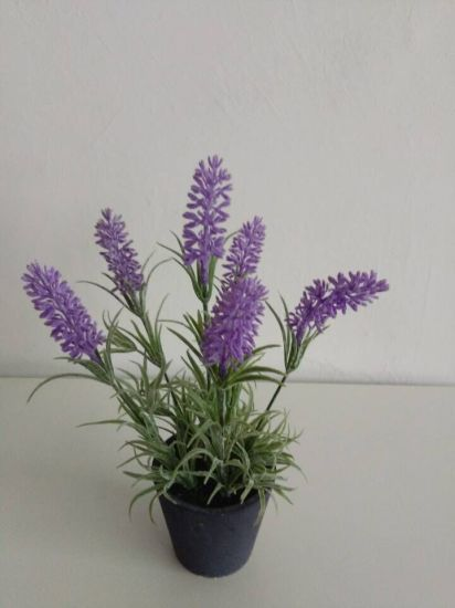 Artificial Flowers of Lavender Gu916215146 pictures & photos