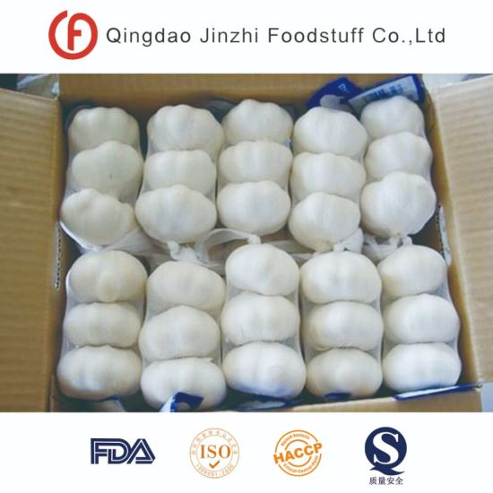 New Crop Frozen Fresh Peeled Garlic pictures & photos
