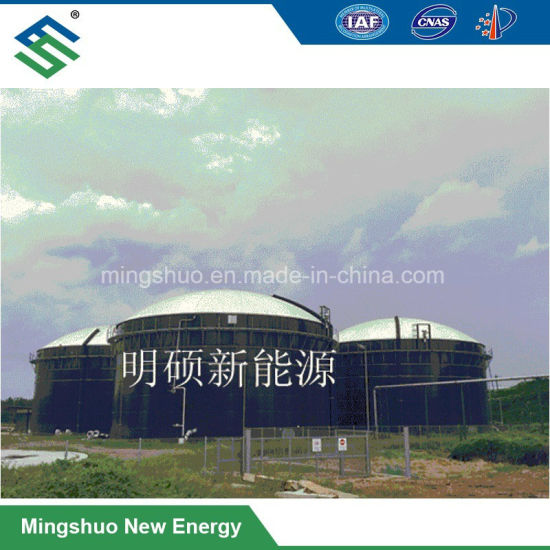 3000m3 Uasb Biogas Plant Tank Reactor for Industrial Wastewater