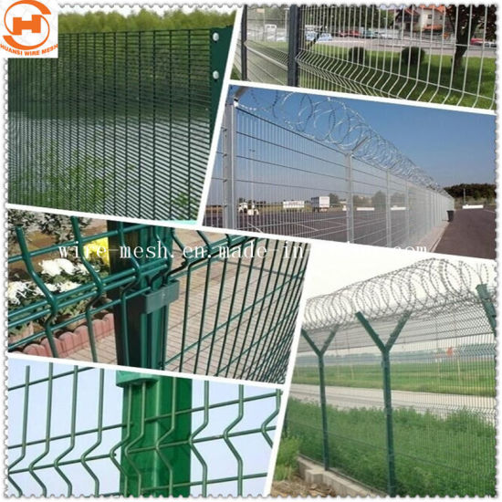 Galvanized/Coated Garden Fence/Wire Mesh Fence