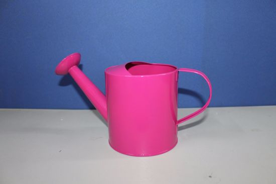 Galvanized Watering Pot Watering Can Watering Tin pictures & photos