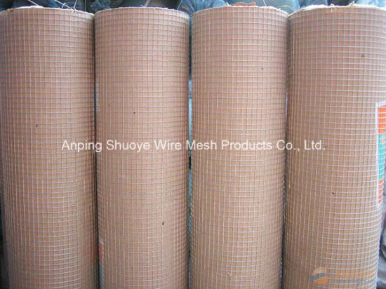 Galvanized Steel Welded Wire Mesh for Garden Fence pictures & photos