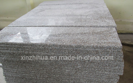 G635 Red Granite Natural Stone Slabs/Tiles/Stair Steps pictures & photos