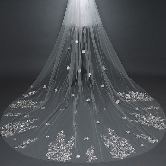 Long Veil Tulle with Lace Bridal Wedding Veil Ts5502