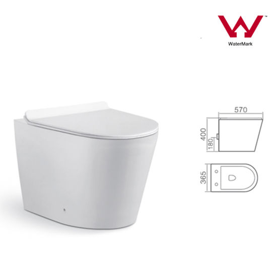Watermark Luxury Bathroom Toilet Pan with Concealed Cistern Sanitary Ware (2057B)