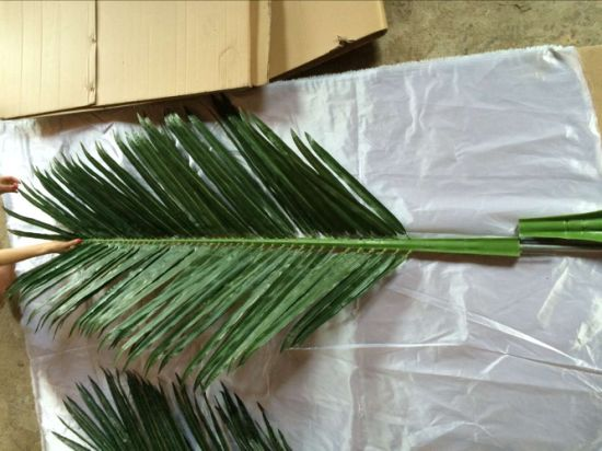 Artificial Plants and Flowers of Coco Palm Leaves 2.2m Gu-SL-C. C. P. L-2.2m pictures & photos