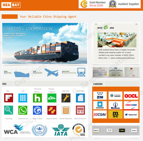 Best Freight Forwarder From Shenzhen to Singapore