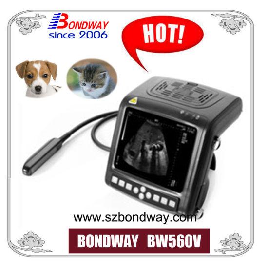 Veterinary Ultrasound Equipment 4D Color Doppler Scanner