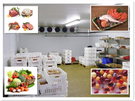 PU Sanwich Panel Refrigeration Cold Room/Blast Freezer pictures & photos