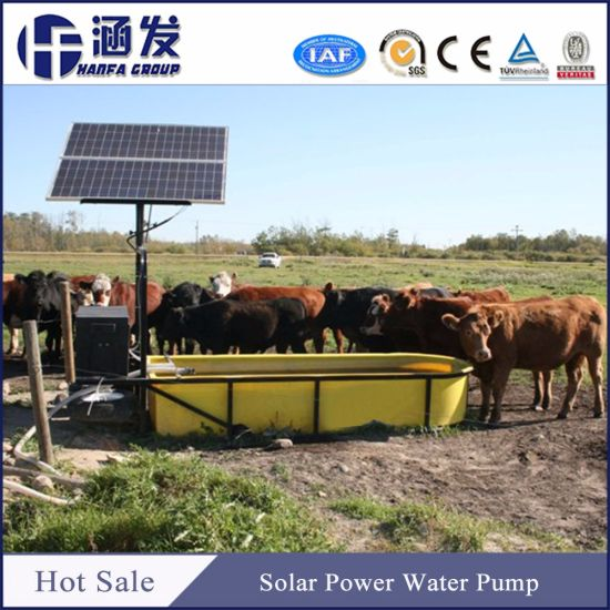 Solar Water Pump Pasture Irrigation, Agriculture Dripping Irrigation Soalr Pump pictures & photos