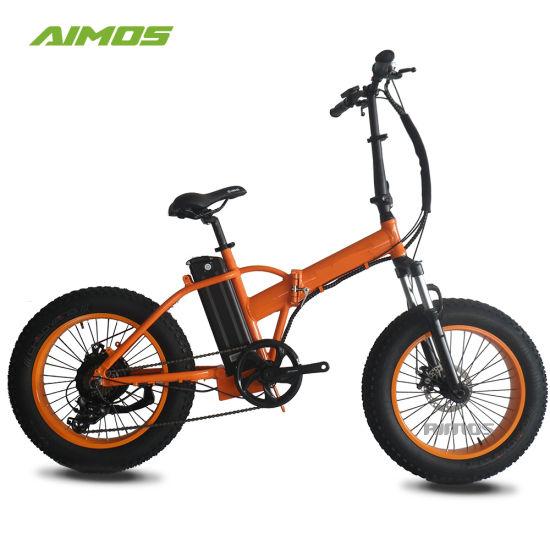Lohas Folding Big Power Ebike Electric Bike with Panasonic Lithium Battery