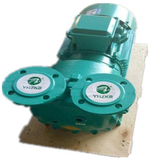 2BV5 111 Liquid/Water Ring Vacuum Pump