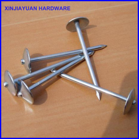 Galvanized Roofing Nails Umbrella Head Twisted Shank pictures & photos