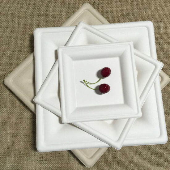Disposable Composable Eco Friendly Square Plate & China Disposable Composable Eco Friendly Square Plate - China ...