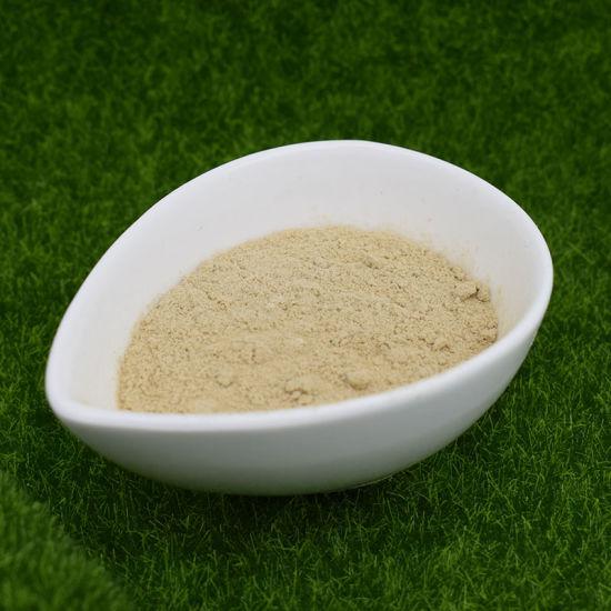 L Prolin Amino Acid Powder, Amino Acid Milk Powder for Plant, API Amino Acid Powder