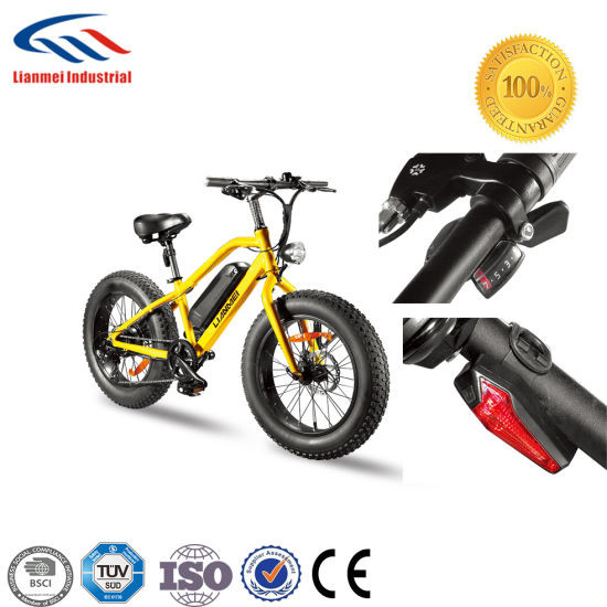 Wholesale China Electric Bike with Disc Brake