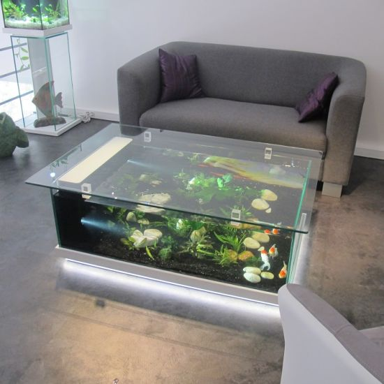 Charmant Feature Furniture Glass Fish Tank With LED Light For Home Decoration Table  Aquarium