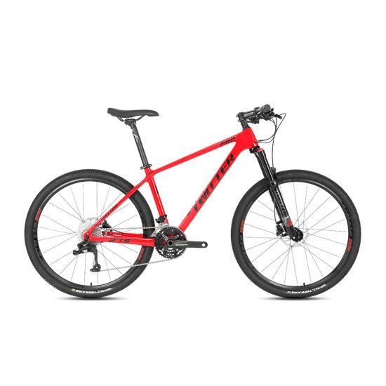 22 Speed Carbon Fiber Mountain Bike with Disc Brake