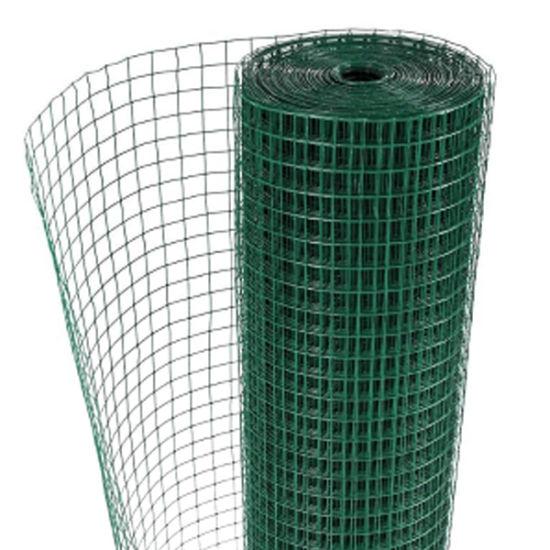 Plastic Coated Galvanized Welded Wire