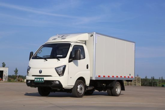 Waw Diesel Mini Cargo Truck with Euro 5 Engine pictures & photos