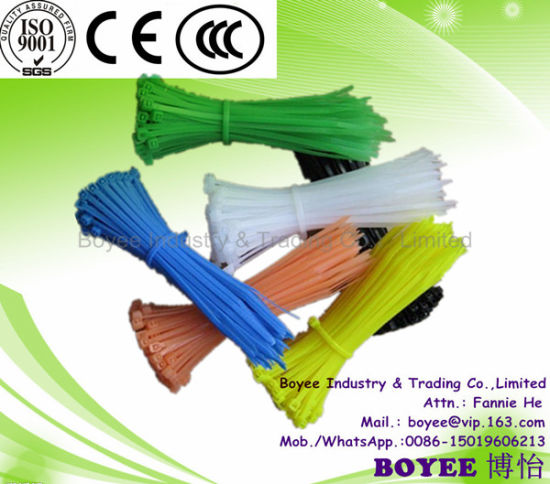 White or Black Color Nylon Cable Tie