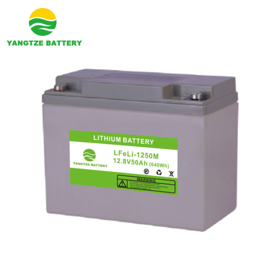 12V 50ah Li-ion Lithium Ion LiFePO4 Battery with More Than 8000 Cycles Life